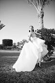 Playful Bride. Bride Luxury White Wedding Dress Sunny Day Tropic Nature Background. Tropic Wedding.  poster