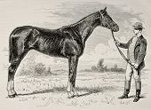 Old illustration of The Earl, winner of  the Grad Prix de Paris in 1868. Created by Janet-Lange and