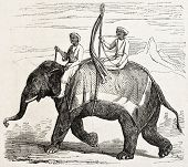 Old illustration of an elephant in Oude, antique Indian northern kingdom, By unidentified author,  p