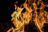 Burning Wooden Log. Black Background. Fire Burning poster