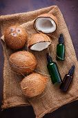 coconut oil with coconuts - beauty treatment poster