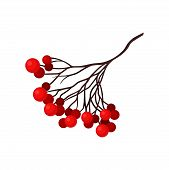 Small Branch With Bright Red Berries. Natural Christmas Decoration. Flora And Botany Theme. Flat Vec poster