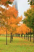 Autumn Park Alley And Colorful Trees On Fall Season Day With No People. Cozy Park Road And Walkway P poster