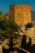 Kizil Kule Tower. The Red Tower Is An Old Landmark In The City Alanya. Turkey poster