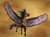 picture of pegasus  - Pegasus rises in the sky with on huge wings - JPG