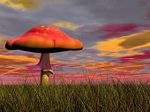 stock photo of magical-mushroom  - One fairy red mushroom in the green grass by colorful cloudy sunset - JPG