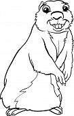 pic of gopher  - Black and White Cartoon Illustration of Funny Gopher Animal for Coloring Book - JPG