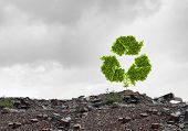 image of reuse recycle  - Conceptual image with recycle green sign growing on ruins - JPG