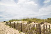 pic of sea oats  - An old wood fence among sand dunes and sea oats on the beach - JPG