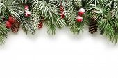 picture of snow border  - Snow covered Christmas tree branches background - JPG