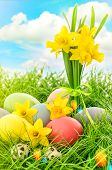 picture of leak  - Easter eggs decoration and narcissus flowers in green grass over cloudy blue sky - JPG
