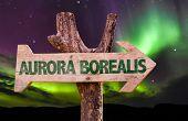 picture of aurora borealis  - Aurora Borealis wooden direction sign - JPG