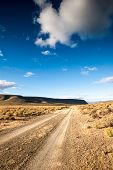 pic of semi-arid  - A desert road stretches into the distance of the Karoo Desert in South Africa - JPG