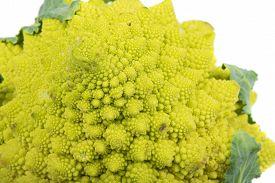 pic of romanesco  - Closeup of Romanesco broccoli or Roman cauliflower isolated on white background - JPG