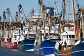 Постер, плакат: Голландский Харбор с современной рыбалки резцов