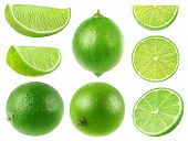Isolated Limes. Collection Of Whole And Lime Fruits Isolated On White Background With Clipping Path poster