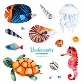 Underwater Creatures Watercolor Collection With Multicolored Coral Fish.shells,turtle,jellyfish,seah poster