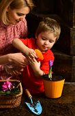 Watering Concept. Little Child Watering Spring Flower With Mother. Mother And Son Hold Watering Spra poster