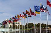 Постер, плакат: Флаги стран мира