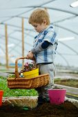 Green Plant. Small Gardener Grow Green Plant. Happy Kid Grow Plant In Greenhouse. Grow Plant In Mode poster