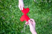 Hand Women Send Red Heart And Hand Men Send Red Heart For Exchange Hearts, Double Heart, Grass Backg poster