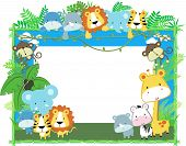 picture of chimp  - cute jungle baby animals jungle plants and bamboo frame - JPG
