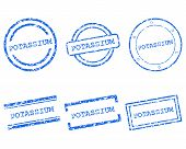 pic of potassium  - Detailed and accurate illustration of potassium stamps - JPG