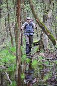 picture of boggy  - hiker in the  boggy forest walking with poles - JPG