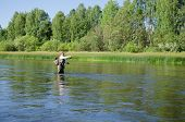 picture of chub  - Fisherman catches of chub fly fishing in the Chusovaya river in the afternoon - JPG