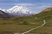 foto of denali national park  - road to mount McKinley in Denali National Park - JPG