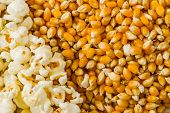 picture of popcorn  - Pile of popcorn and ripe corn on wooden white background - JPG