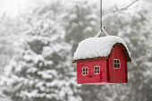 pic of winter trees  - Red bird house hanging outdoors in winter covered with snow - JPG