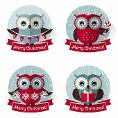 foto of snow owl  - Merry Christmas - JPG
