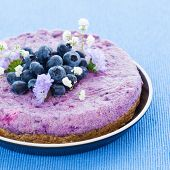 pic of brazil nut  - Vegan raw blueberry cake with brazil nuts and almonds - JPG
