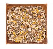 picture of mixture  - Mixture of seeds for canary - JPG