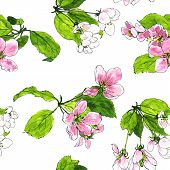 Постер, плакат: seamless pattern with apple blossoms