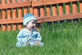 picture of little boys only  - Little cute boy in blue striped suit and hat sitting on green grass near orange fence - JPG