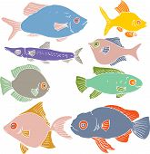 pic of fish  - set of different color fishes - JPG