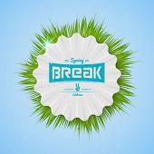 picture of spring break  - Festival spring break realistic badge can be used for flyers and presentations - JPG