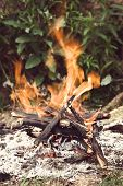 stock photo of bonfire  - Camping bonfire on the green grass close - JPG
