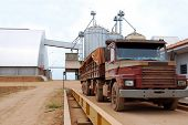 Truck on a scale with a load of soybeans in Brazil, soy storage warehouse and silos in the backgroun