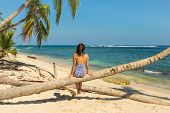 Woman Sitting On Palm Tree On The Beach. Healthy People Lifestyle. Woman Relaxing On The Beach. .vac poster