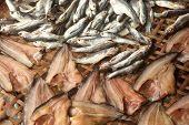image of threshing  - Outdoor Sun Fish In Threshing Basket  - JPG