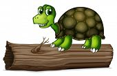 foto of hollow log  - Illustration of a turtle above the wood on a white background - JPG