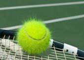 Yellow Tennis Ball