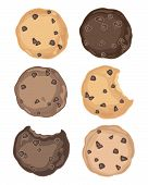 stock photo of chocolate-chip  - an illustration of a selection of delicious chocolate chip cookies on a white background - JPG