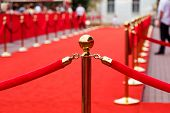 foto of roping  - Way to success on the red carpet  - JPG