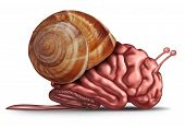 stock photo of thinker  - Thinking slow and brain function problems concept as a human organ in a snail shell as a mental health symbol for struggling with memory and dementia as alzheimer or neurology challenges - JPG