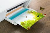 picture of peripherals  - Printer with green leaf and butterfly  - JPG