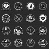 stock photo of vet  - Set of dog ans cats logos and badges  - JPG